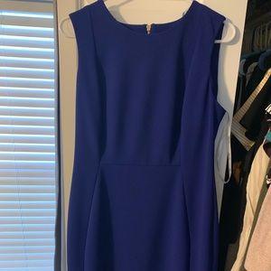Calvin Klein dress royal blue